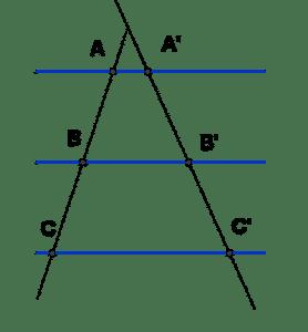 teorema de tales para niños